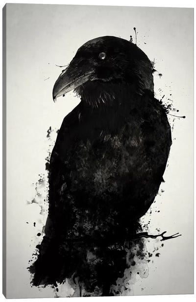 The Raven Canvas Art Print