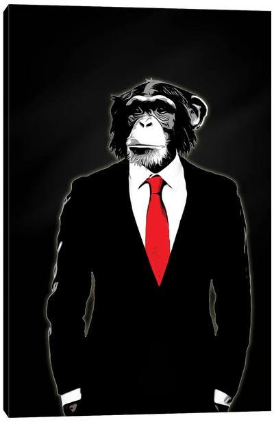 Domesticated Monkey Canvas Art Print