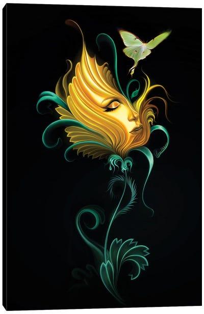 Passion Flowers II Canvas Art Print