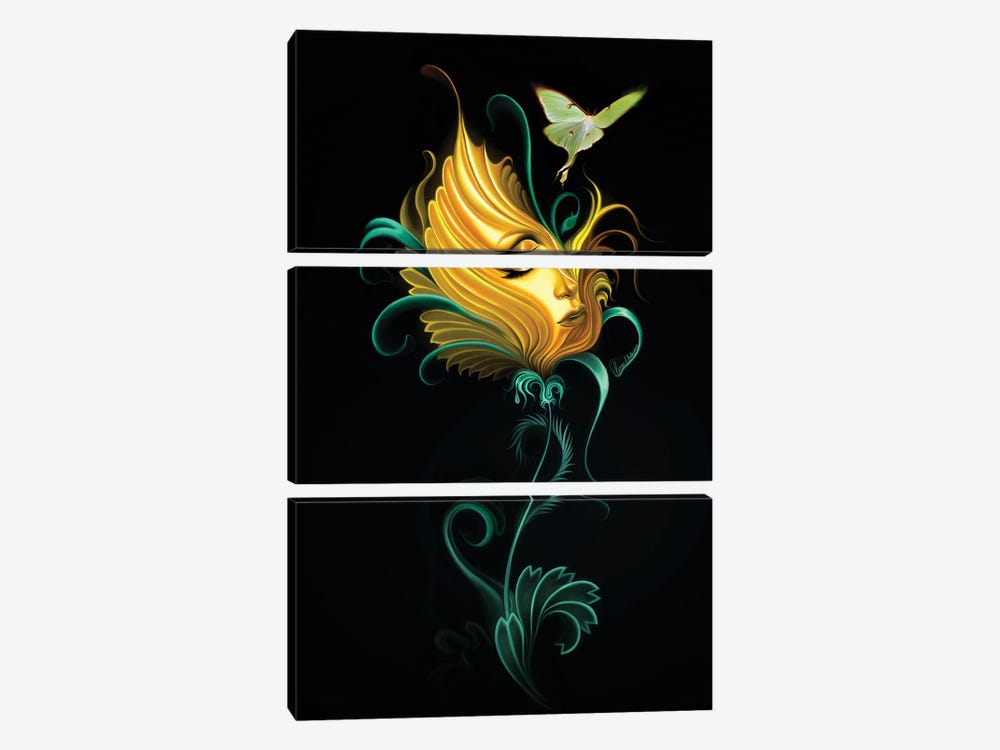Passion Flowers II by George V. Antoniou 3-piece Canvas Artwork