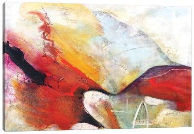 Fugaz II Canvas Art Print