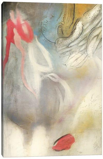 Seccion Angel I Canvas Art Print