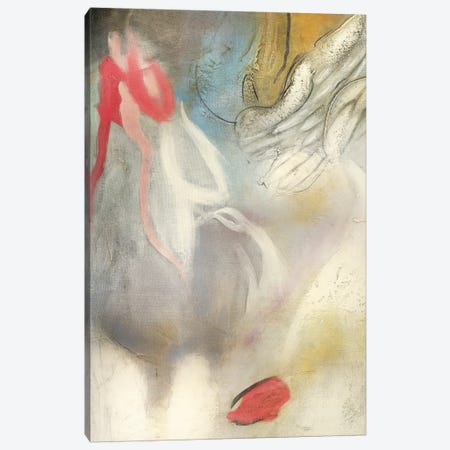 Seccion Angel I Canvas Print #GVI124} by Gabriela Villarreal Canvas Art Print