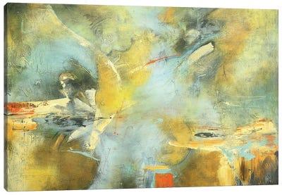 Capricho I Canvas Art Print