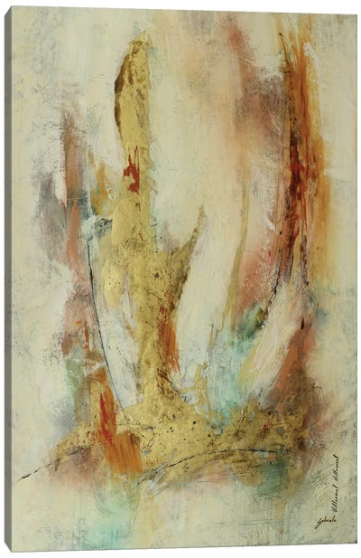 Dorado En Rosa II Canvas Art Print