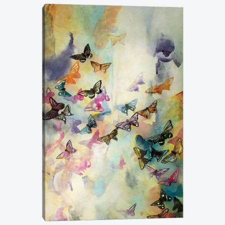 Mariposas III Canvas Print #GVI51} by Gabriela Villarreal Canvas Wall Art