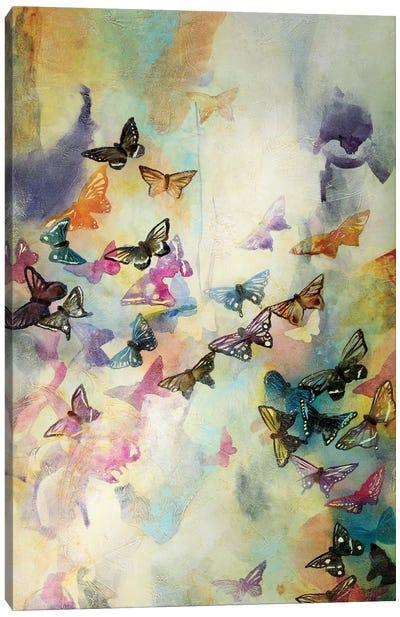 Mariposas III Canvas Art Print