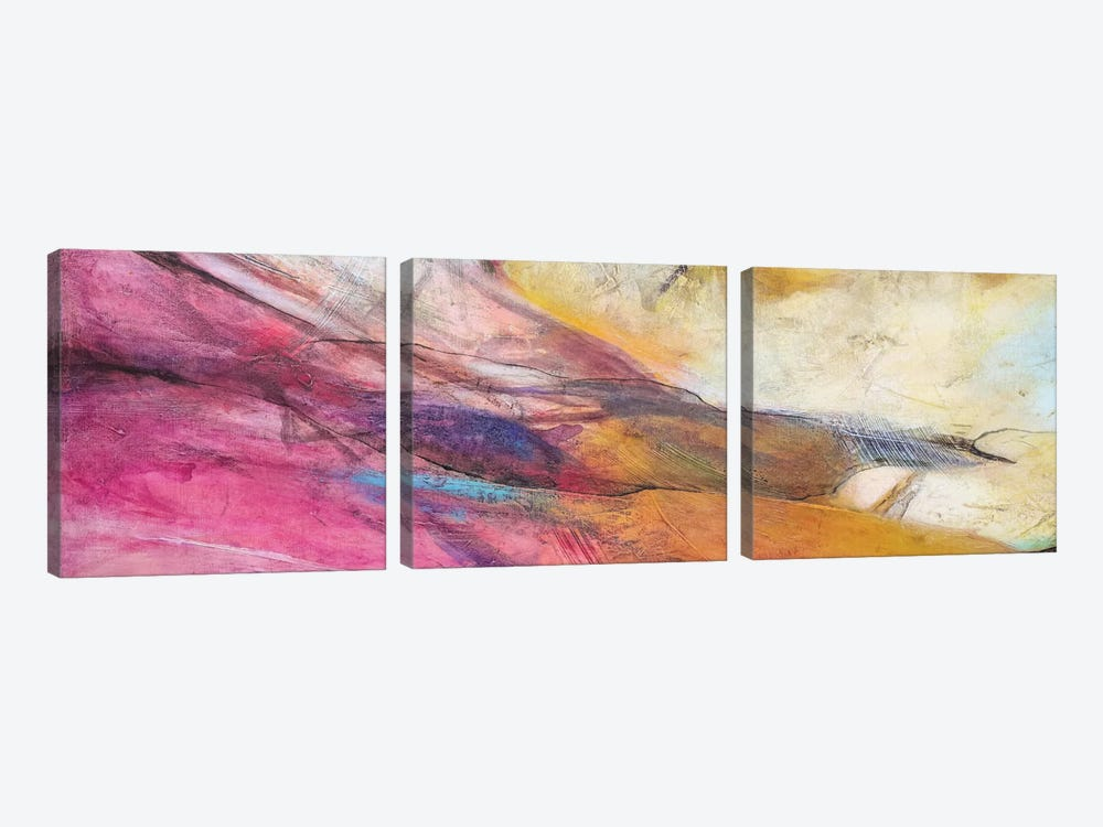 Expression Abstracta II 3-piece Canvas Art