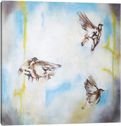 Aves Al Viento I Canvas Art Print