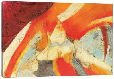 Colores Eclecticos III Canvas Art Print