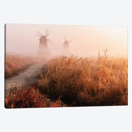 Morning Mist Canvas Print #GWA3} by Gwangseop eom Canvas Art