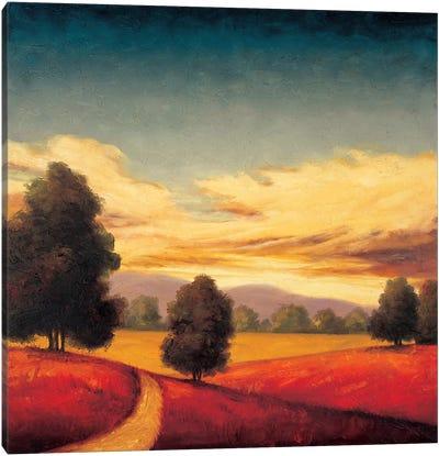 Forever II Canvas Art Print