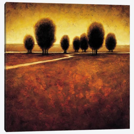 Illumination Canvas Print #GWI15} by Gregory Williams Canvas Artwork