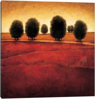Incandescence Canvas Art Print