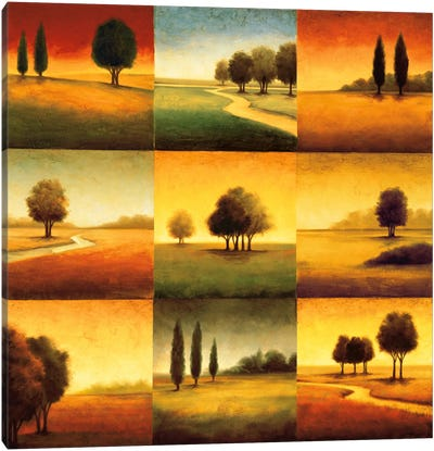 Landscape Perspectives Canvas Art Print