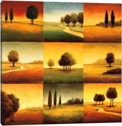 Landscape Perspectives Canvas Art Print