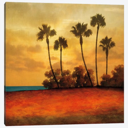 Las Palmas I Canvas Print #GWI22} by Gregory Williams Canvas Artwork
