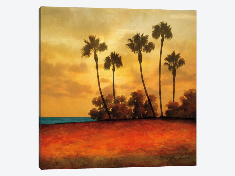 Las Palmas I by Gregory Williams 1-piece Canvas Art Print