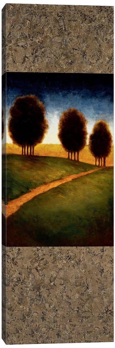 Lighted Path I Canvas Art Print