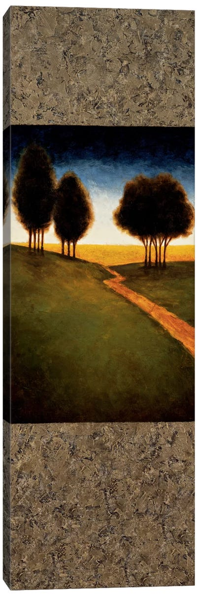 Lighted Path II Canvas Art Print