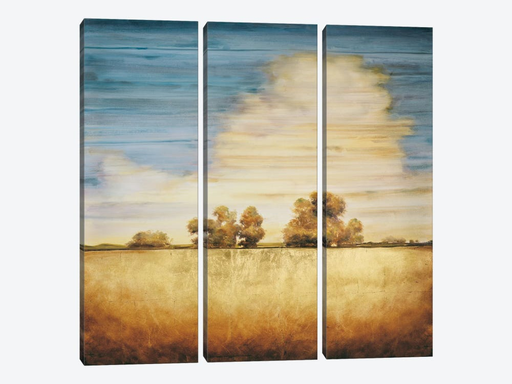 Lucent I by Gregory Williams 3-piece Canvas Art Print