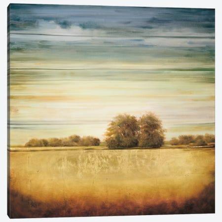 Lucent II Canvas Print #GWI29} by Gregory Williams Canvas Artwork