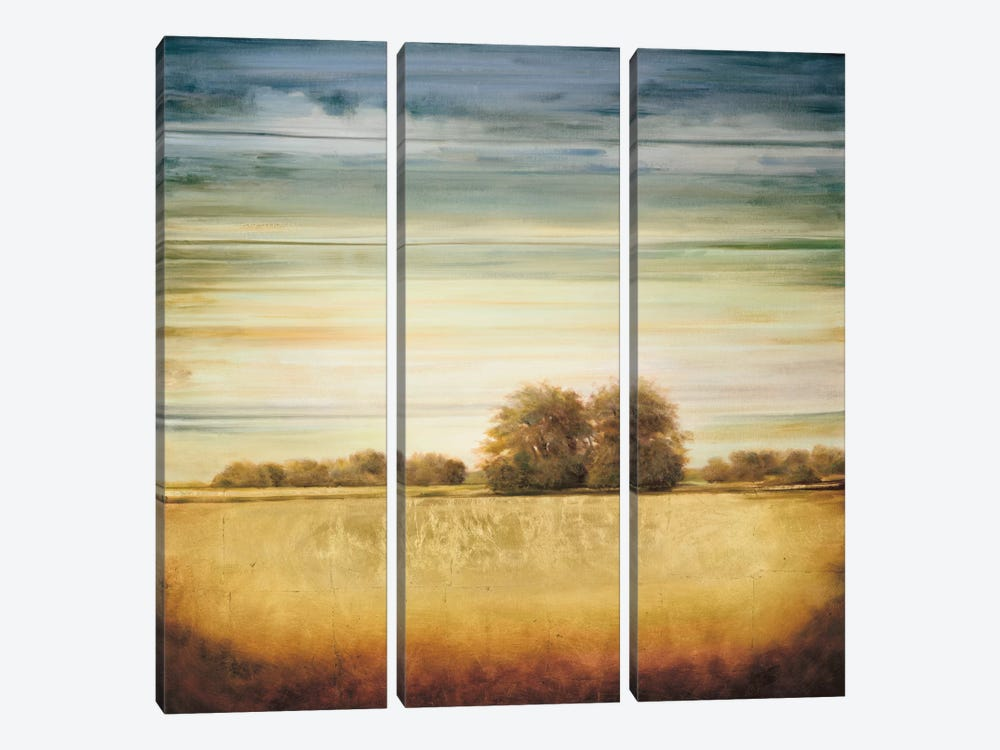 Lucent II 3-piece Canvas Art