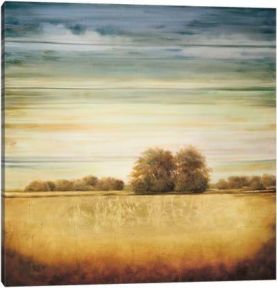 Lucent II Canvas Art Print