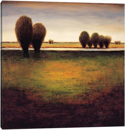 Big Sky I Canvas Art Print