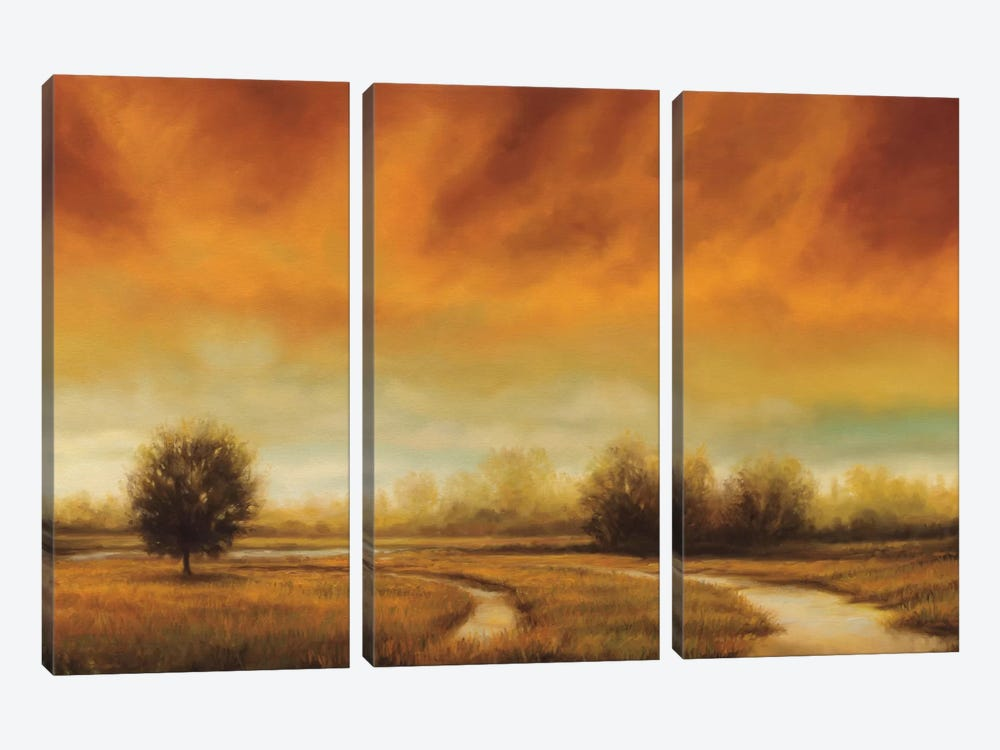 Moment To Moment by Gregory Williams 3-piece Canvas Art