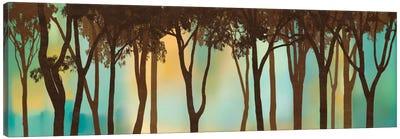 Moonlighting Canvas Art Print