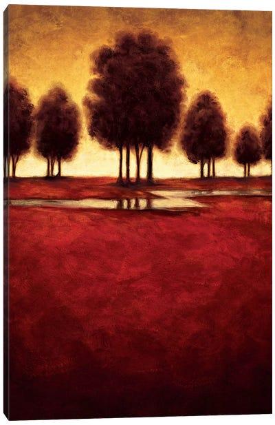 Radiance II Canvas Art Print