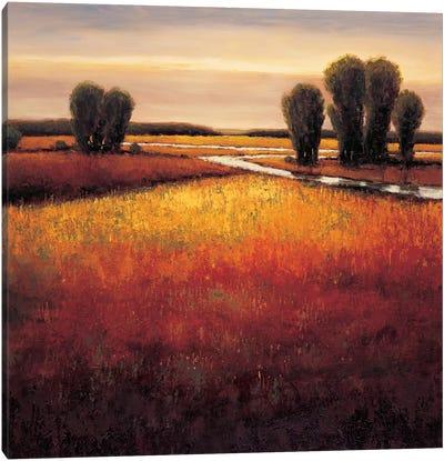 Big Sky II Canvas Art Print