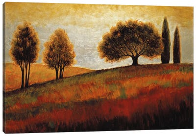 Rising II Canvas Art Print