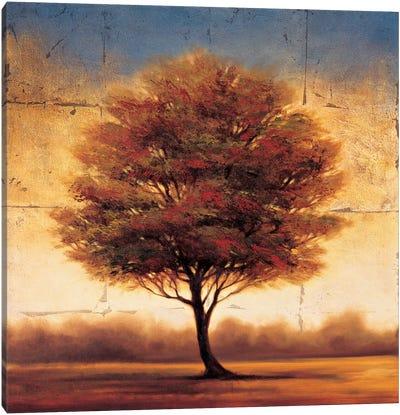Splendor II Canvas Art Print