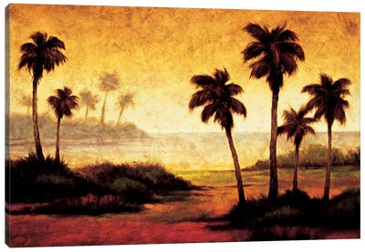 Sunset Palms II Canvas Art Print