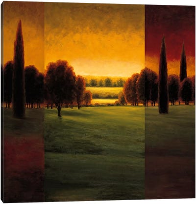 The Break Of Dawn I Canvas Art Print