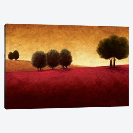 Transcendence Canvas Print #GWI61} by Gregory Williams Canvas Artwork