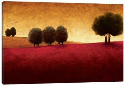 Transcendence Canvas Art Print