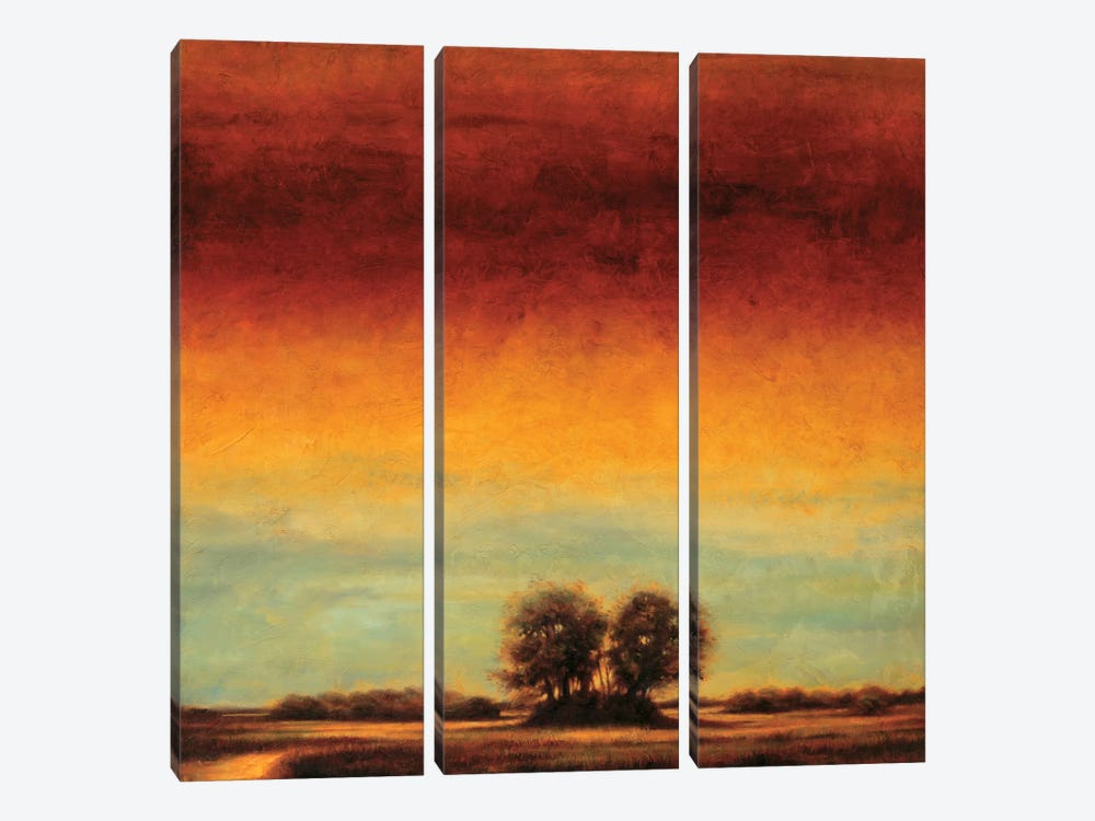 Transformation II by Gregory Williams 3-piece Canvas Art