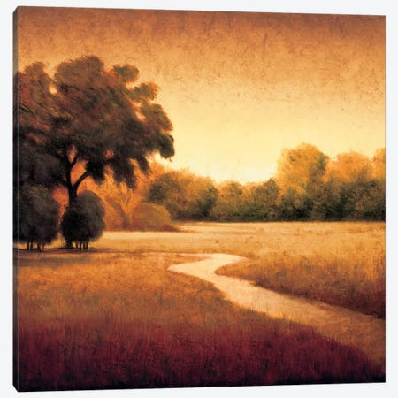 Early Morning I Canvas Print #GWI7} by Gregory Williams Art Print