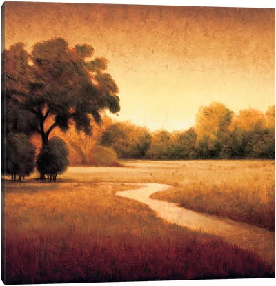 Early Morning I Canvas Art Print