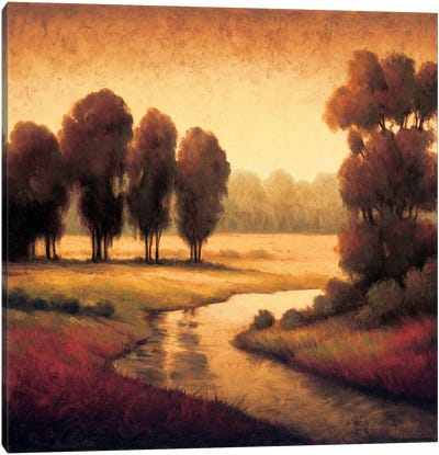 Early Morning II Canvas Art Print