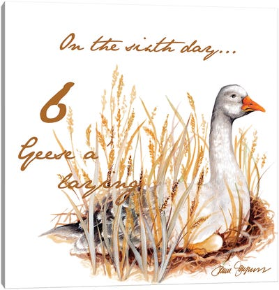 Six Geese a-Laying Canvas Art Print