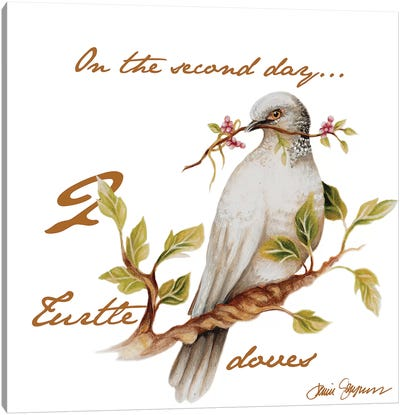 Two Turtle Doves Canvas Art Print