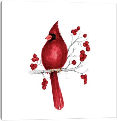 Winter Cardinal In Red II Canvas Art Print