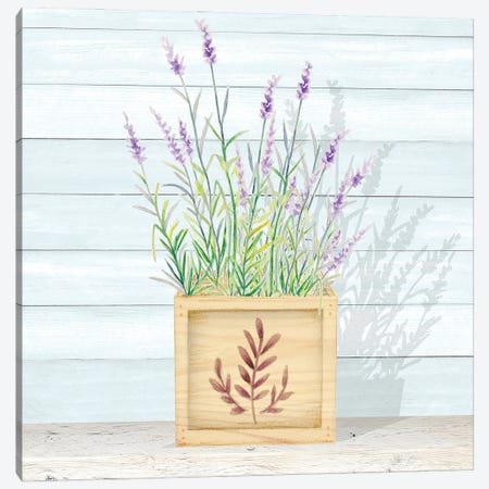 Lavender and Wood Square I Canvas Print #GYN47} by Janice Gaynor Canvas Print