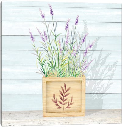Lavender and Wood Square I Canvas Art Print
