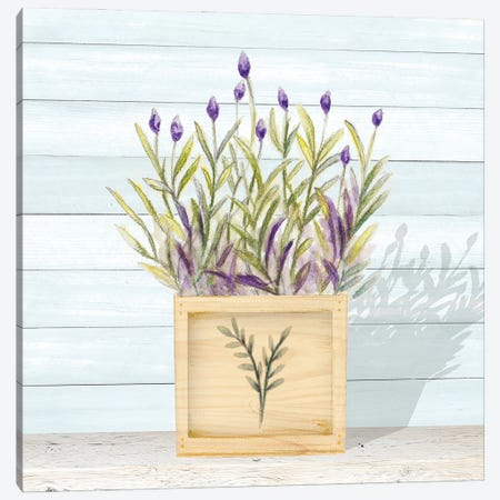 Lavender and Wood Square II Canvas Print #GYN48} by Janice Gaynor Canvas Artwork