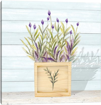 Lavender and Wood Square II Canvas Art Print